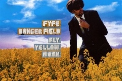 Fyfe_Dangerfield_Fly_yellow_moon