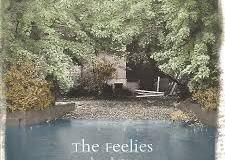 Feelies_Here_before