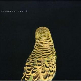 Andrew Bird - Armchair apocrypha
