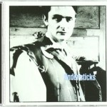 Tindersticks - The second Tindersticks album