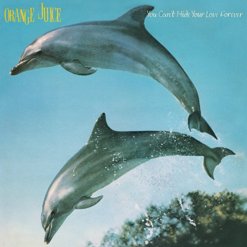 Orange Juice - You can't hide your love forever